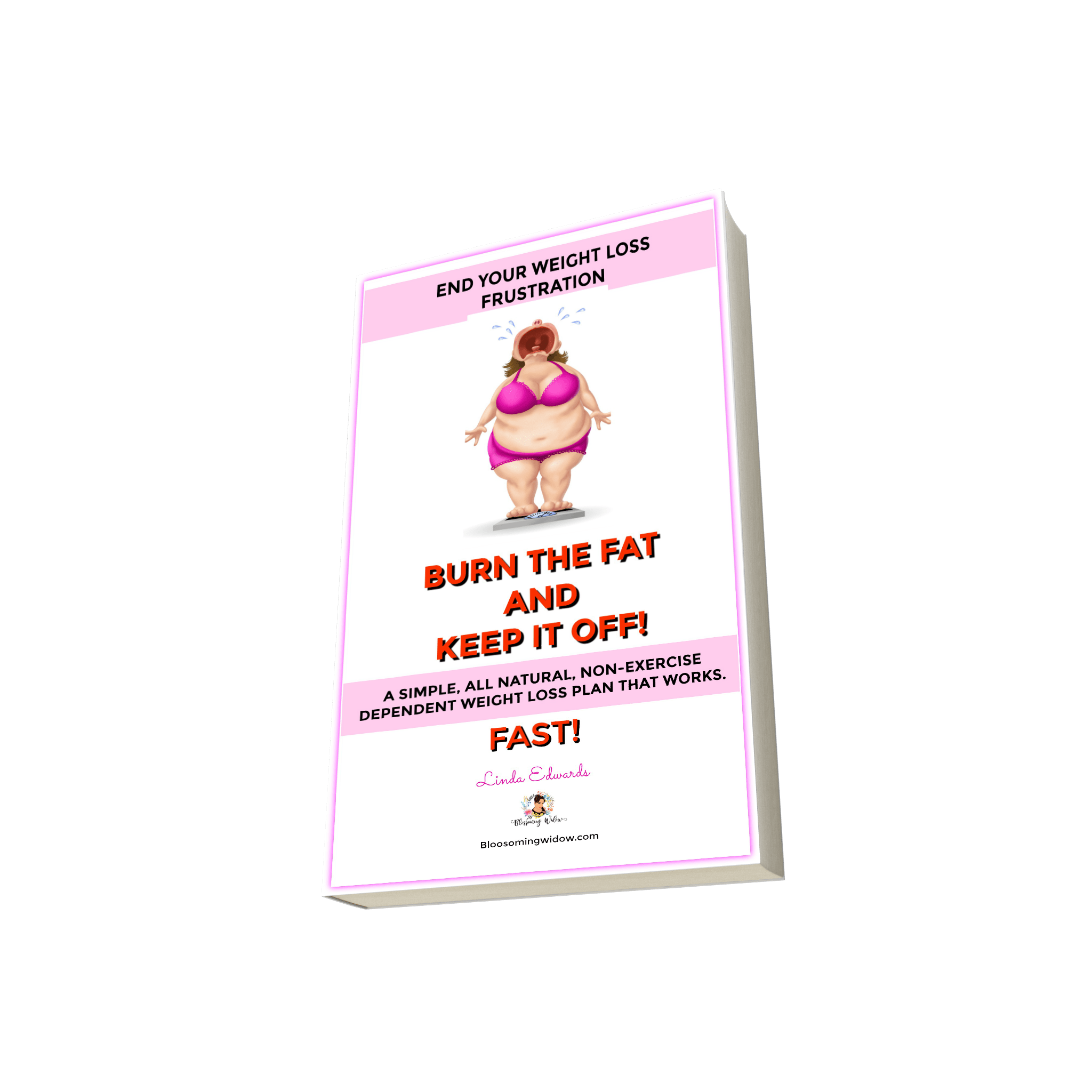 Burn The Fat And Keep It Off Weight Loss Plan : A simple, all natural, non-exercise dependent weight loss plan that works fast!