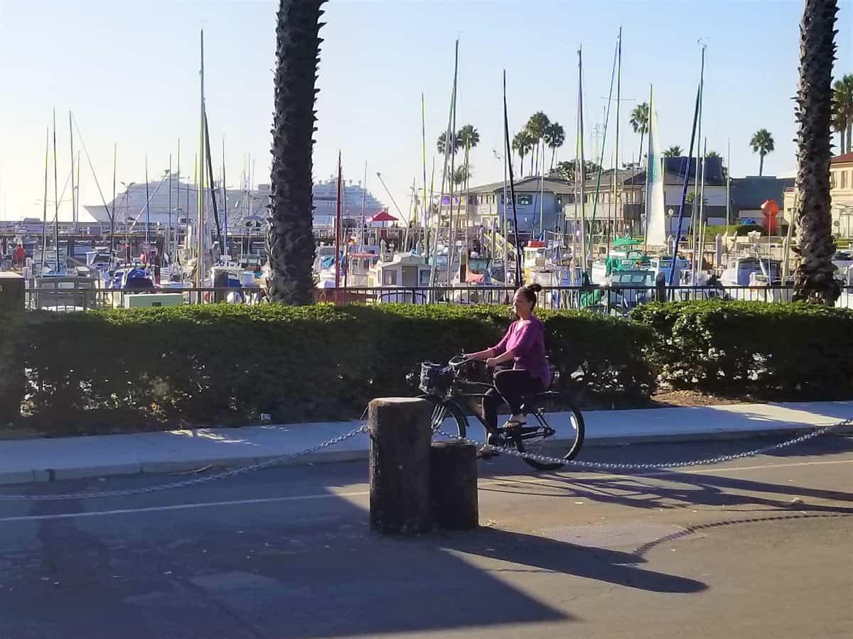 Biking path by marina