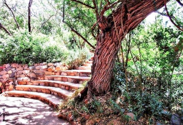 Adobe Eco-Cottage garden