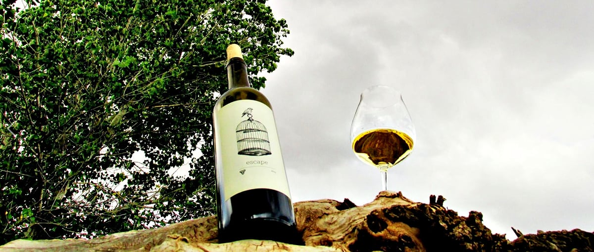 Flying Leap Escape wine