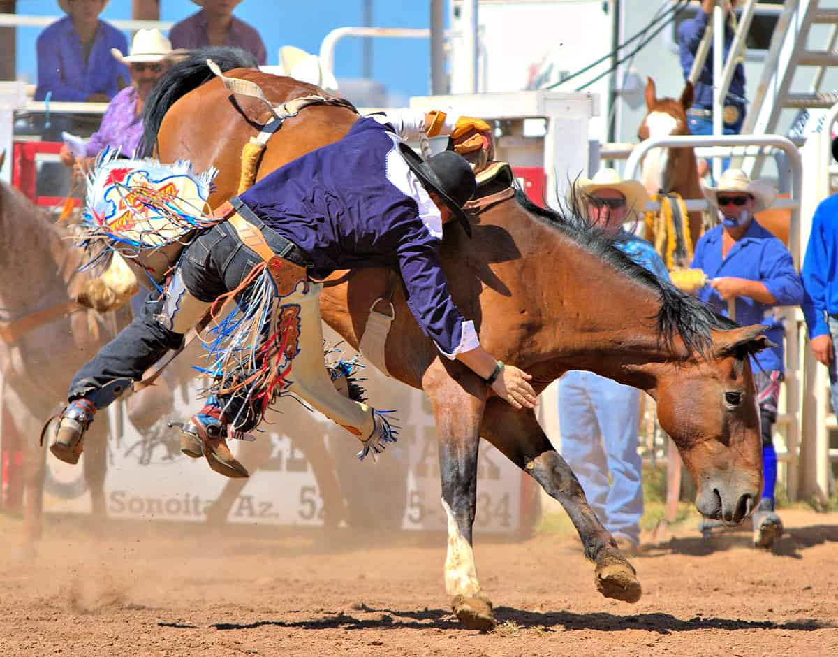 Cowboy holding on to horse at Sonoita Rodeo