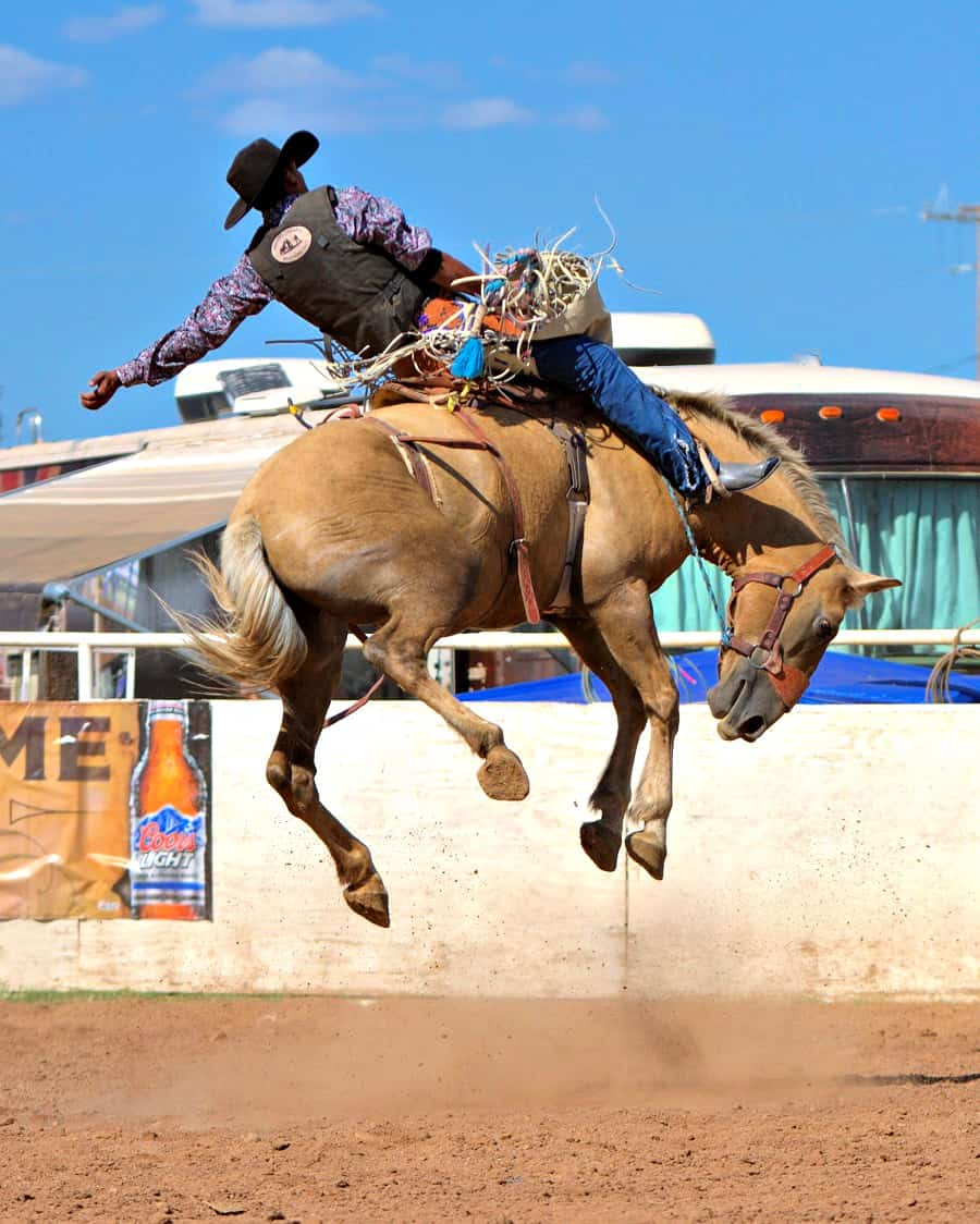 Cowboy on jumping horse at Sonoita Rodeo