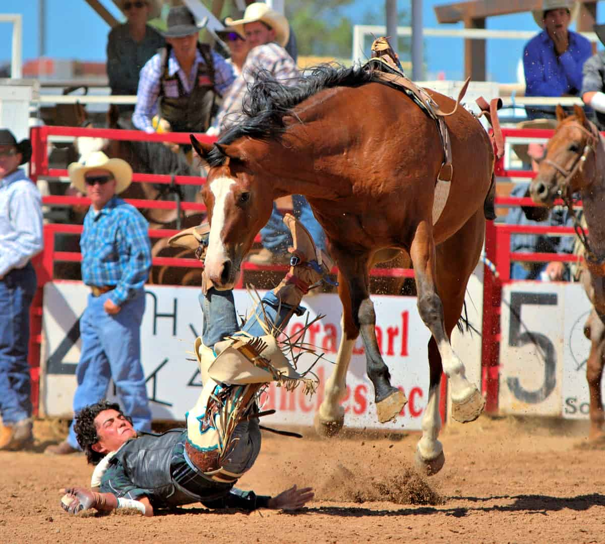 Cowboy falling off horse at Sonoita Rodeo