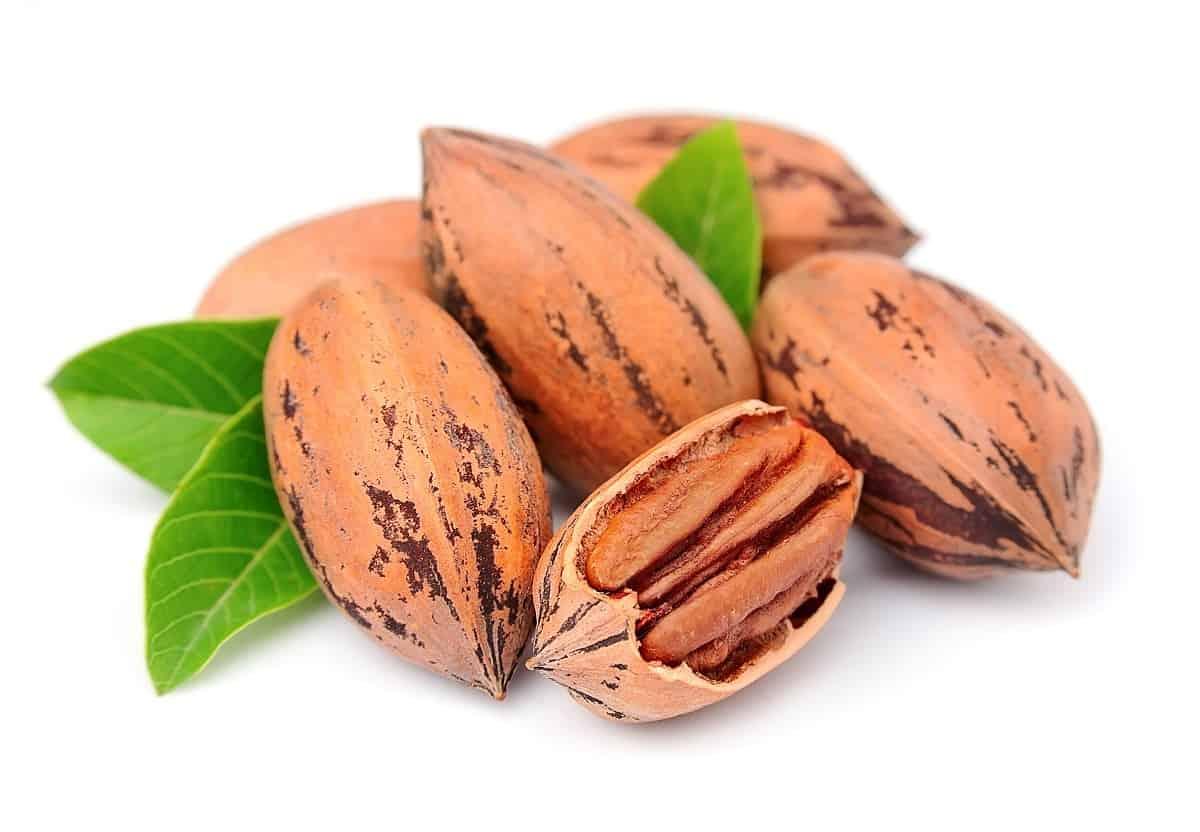 are pecan healthy?
