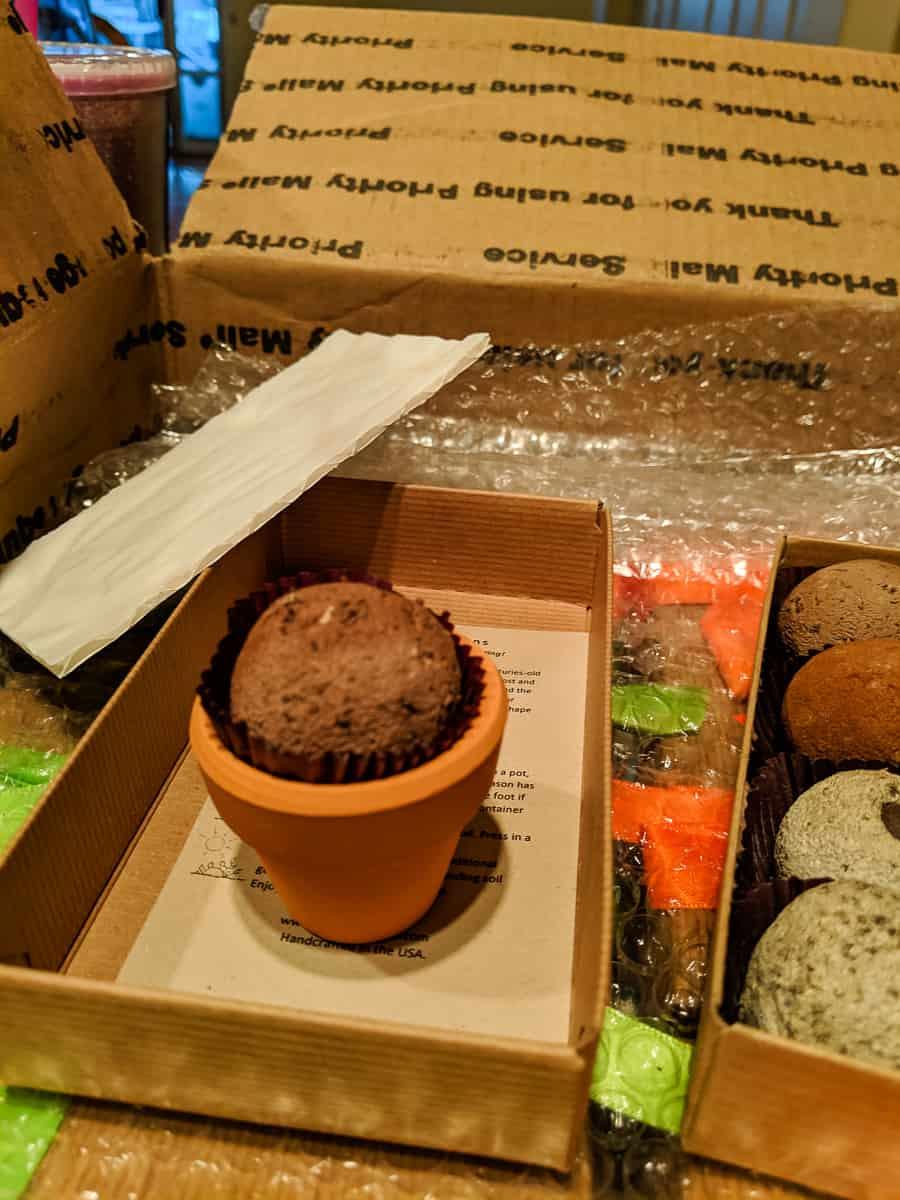 Garden bonbon on a small clay pot