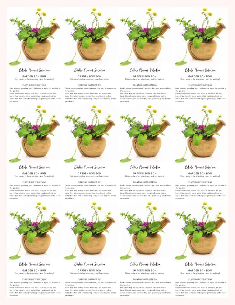 Garden bonbon planting instructions