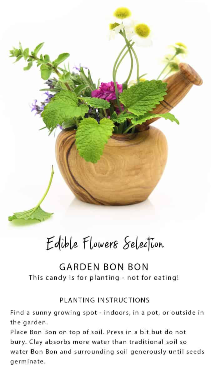 Garden bonbon planting instructions