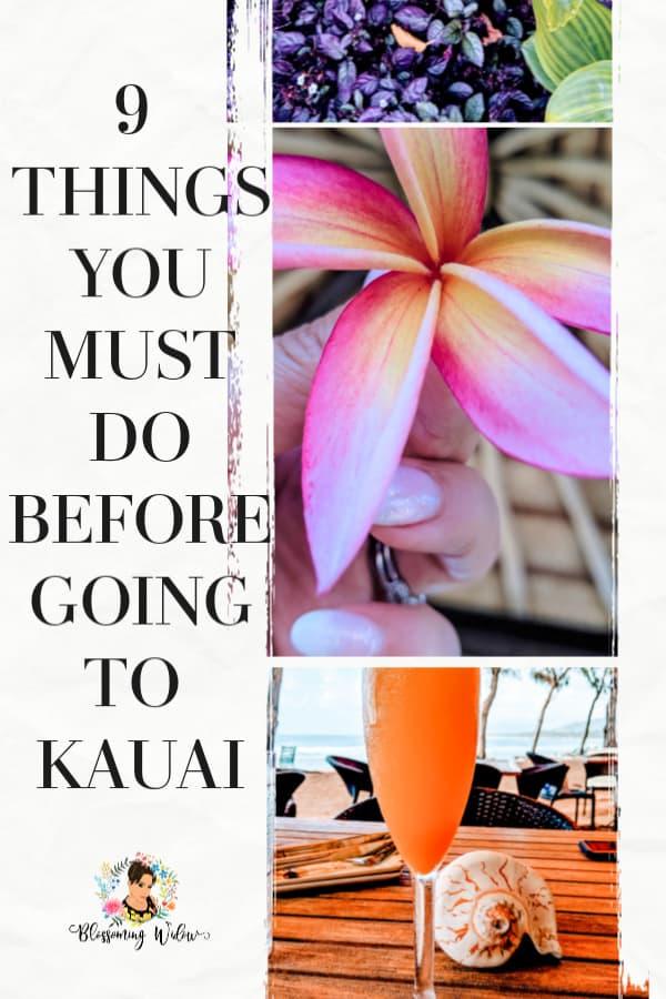 Do Kauai Pinterest Pin