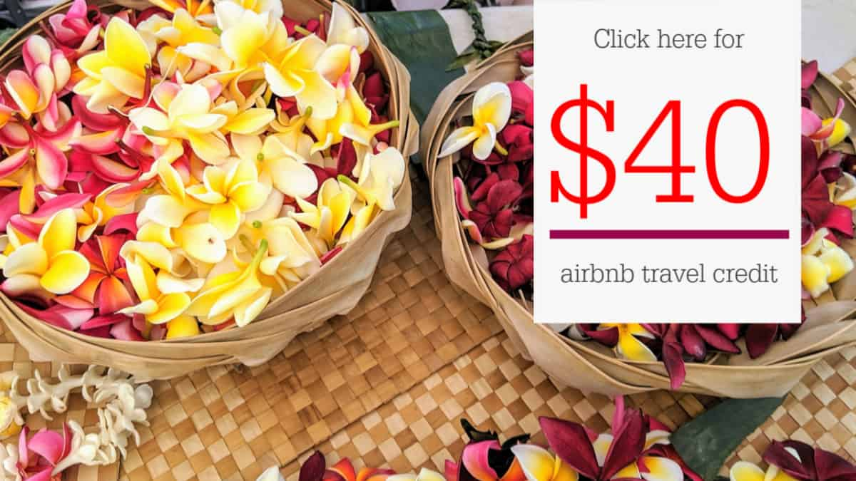airbnb $40 credit ad picture with plumerias