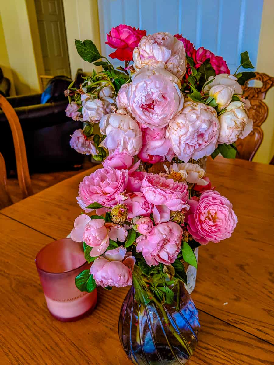English roses arrangement