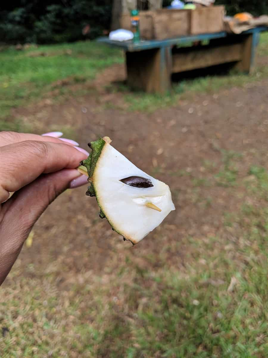 Wedge of Soursop on a toothpick