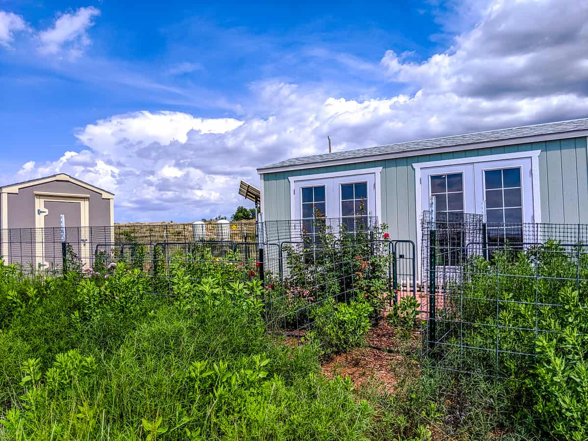 Love Shack front yard in Sonoita, Arizona