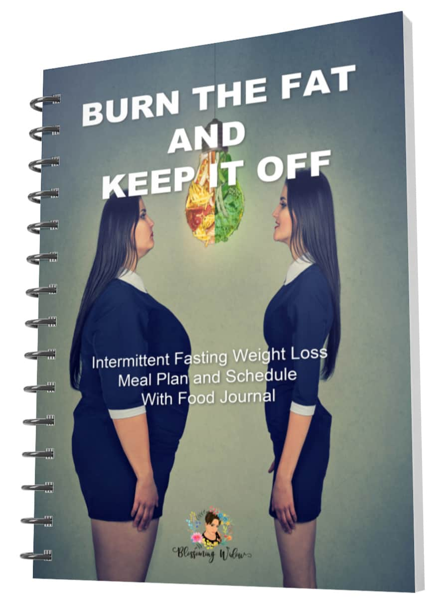Burn The Fat And Keep It Off Spiral Bound PDF